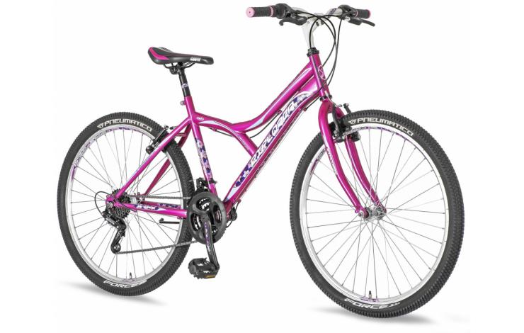 Bicikla 3104